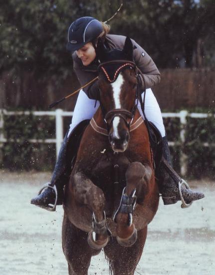 Olivotti_cavallo